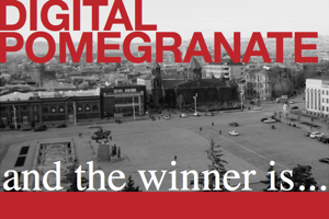 Digital Pomegranate needs a logo…Thank You for your Vote